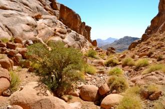 Wadi Ahmar